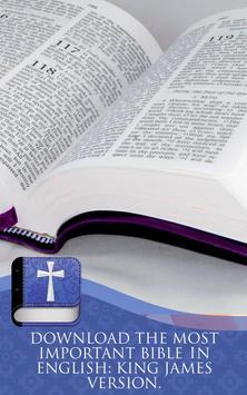 KJV Holy Bible Free Download apk screenshot