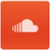 SWebview Window icon