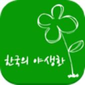 한국의야생화-2200 icon