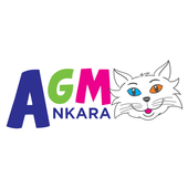 AGM Ankara icon