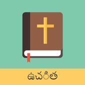 Telugu English Bible icon