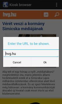 Kiosk Browser apk screenshot