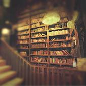 Library: thereisonlywe icon