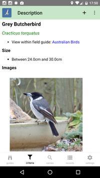 Australian Birds Guide apk screenshot