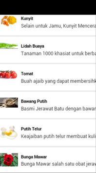 Obat Jerawat Alami apk screenshot