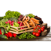 Healthy Tasty Recipes icon