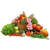 Healthy option recipes icon