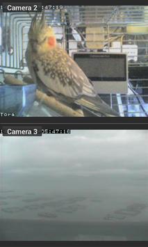 Foscam IP camera viewer apk screenshot