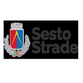 Sesto Strade icon