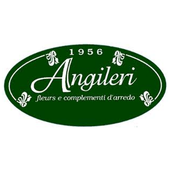 Angileri icon
