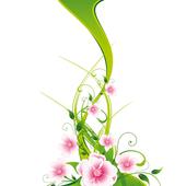 Ragona & D'antoni icon