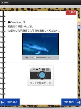 アンケート作成システムSeEZ-Q(シーズキュー) apk screenshot