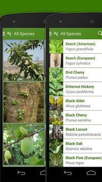 iKnow Trees 2 LITE apk screenshot