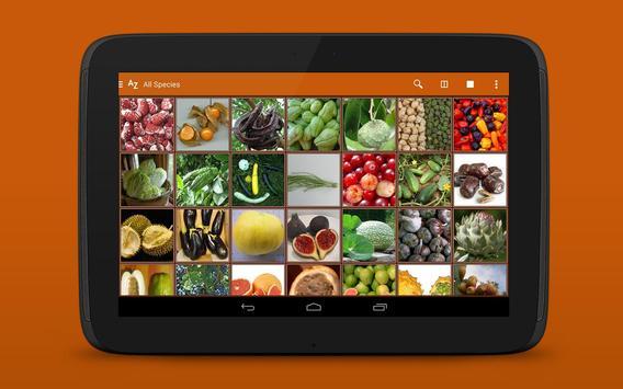 Exotic Fruits & Vegetables 2 L apk screenshot