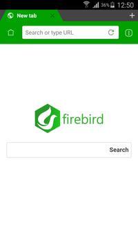 Firebird Browser Pro superFast poster