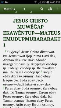 Mundurukú - Bible poster