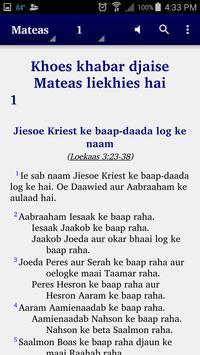 Sarnami Hindoestani - Bible poster