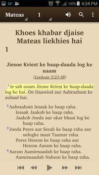 Sarnami Hindoestani - Bible apk screenshot