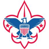 Boy Scout Troop 263 icon