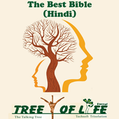The Best Bible - Hindi icon
