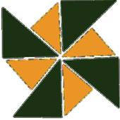 CASE 2013 icon