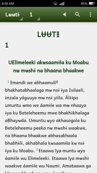 Biblia katika Kimalila poster