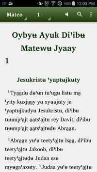 Mixe Juquila - Bible poster