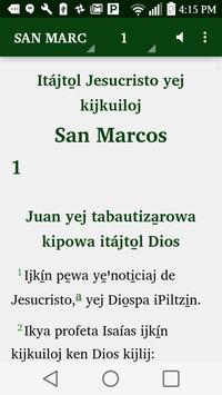 Nahuatl Tatahuicapan - Bible poster