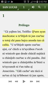 Chontal Tabasco - Bibe apk screenshot