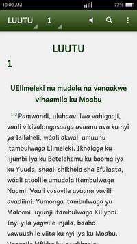 Biblia katika Kisangu poster