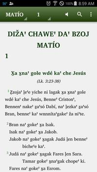 Zapoteco Yatee Bible poster