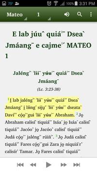 Chinanteco Comaltepec - Bible apk screenshot