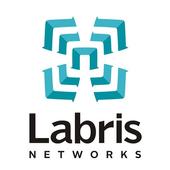 Labris SSL VPN icon