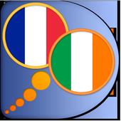 French Irish dictionary icon