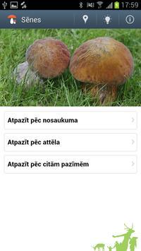 Sēnes Latvijā poster