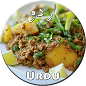 Keema Recipes in Urdu icon