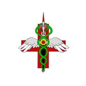 SkinnyMedic icon