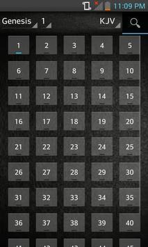 Bible KJV (English) apk screenshot