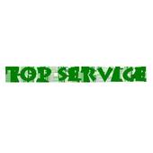 TopService icon
