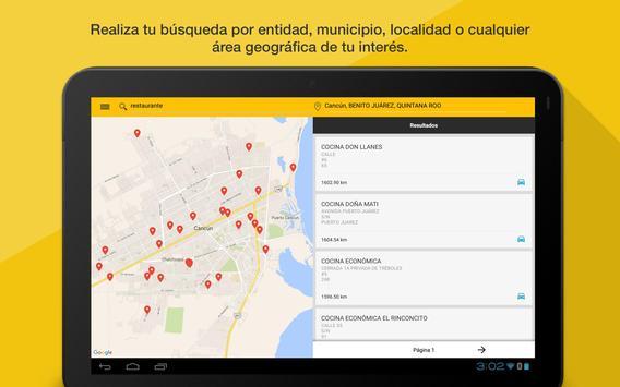 DENUE apk screenshot