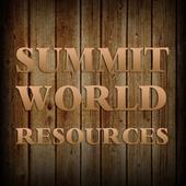 Summit World icon