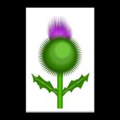 Weegie icon