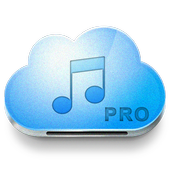 guide for Music Paradise Pro icon