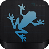 Indian Frogs icon