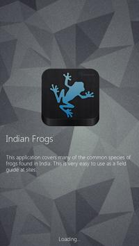 Indian Frogs poster