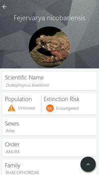 Indian Frogs apk screenshot