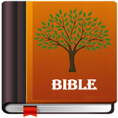 The NLV Bible icon