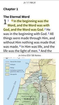 NKJV Bible by Olive Tree poster