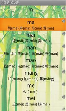 Chinese Pinyin apk screenshot
