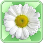 Сборник лекарственных растений icon